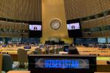 Работа по поддержке женщин в Узбекистане озвучена с трибуны ООН на узбекском языке