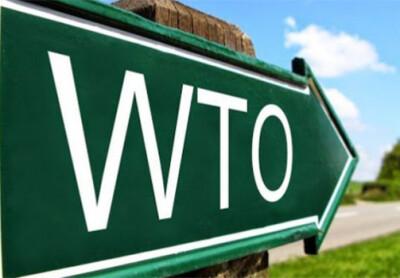 Состоялось четвертое заседание Рабочей группы по вступлению Республики Узбекистан в ВТО