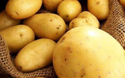 Украина впервые импортирует картофель из Узбекистана