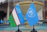 Верховный комиссар ООН по правам человека приветствует сотрудничество с Узбекистаном