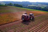 Опыт Нидерландов в сфере развития сельского хозяйства