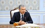 President of Uzbekistan receives the UAE delegation