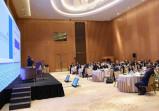 Международная конференция по вопросам водоснабжения и санитарии