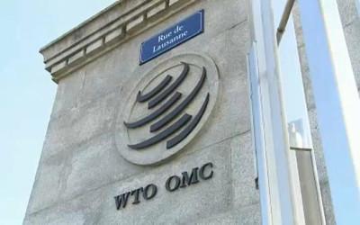 Торгово-экономический потенциал Узбекистана презентован в Женеве