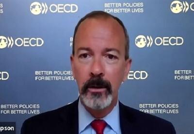 «Мы видим перспективные направления сотрудничества с Узбекистаном на ближайшие годы» - представитель ОЭСР