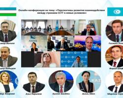 Эксперты отметили возрастающую роль Тюркского Совета в поддержании многостороннего сотрудничества тюркоязычных государств
