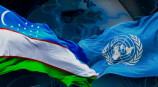 Взгляд из Саудовской Аравии: Инициативы, выдвинутые Президентом Узбекистана на Генеральной Ассамблее ООН, показали необходимость совместных действий