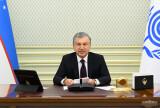 Выступление Президента Республики Узбекистан Шавката Мирзиёева на 14-м саммите Организации экономического сотрудничества, прошедшем в формате видеоконференции