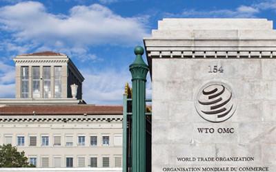Проект «Дорожной карты» по ускорению вступления Узбекистана в ВТО вынесен на обсуждение общественности