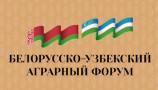 Чем Узбекистан поможет Беларуси